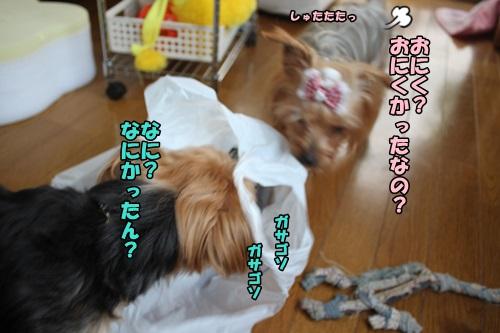 IMG_7832.jpg