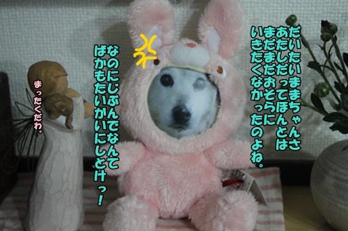 IMG_8151.jpg