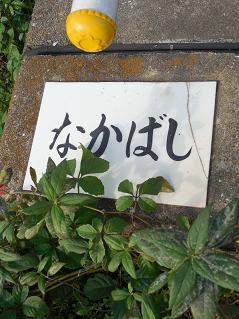 霞川の中橋(なかばし)@入間市C
