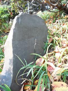 氷川神社の富士塚「雀ノ森富士」@川越市C