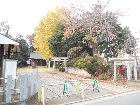 氷川神社の富士塚「雀ノ森富士」@川越市A