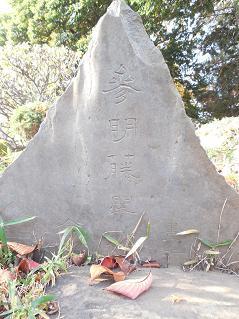 氷川神社の富士塚「雀ノ森富士」@川越市L