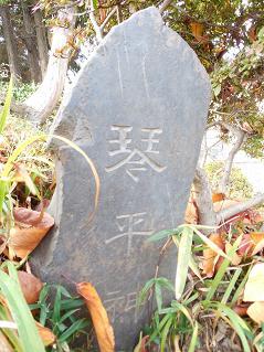 氷川神社の富士塚「雀ノ森富士」@川越市K