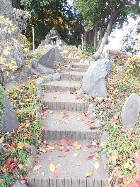 氷川神社の富士塚「雀ノ森富士」@川越市G