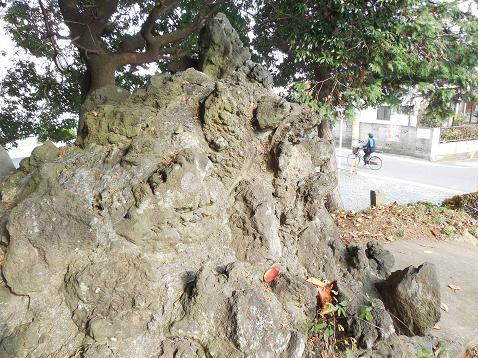 氷川神社の富士塚「雀ノ森富士」@川越市R
