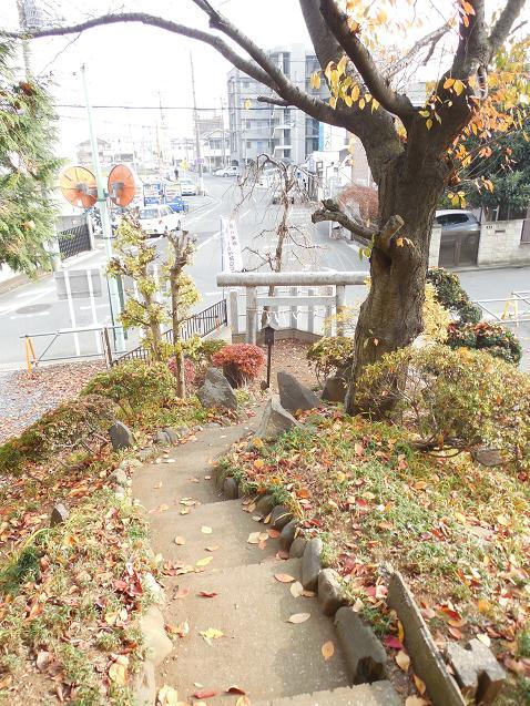 氷川神社の富士塚「雀ノ森富士」@川越市N