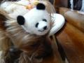 ナンフェア モカちゃんと羊毛フェルトのパンダ