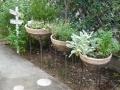 ナンフェア ガーデン 寄せ植え