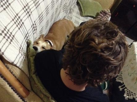 犬は寝違えないのか?