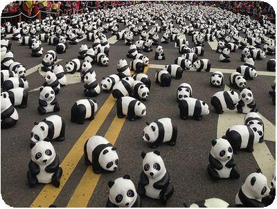 1600貓熊世界之旅いっぱい