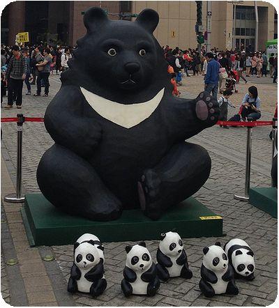 1600貓熊世界之旅クロクマ