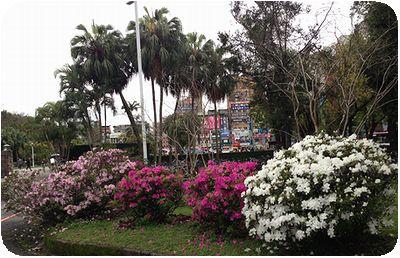台湾大学入口