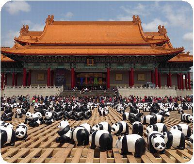 1600猫熊世界之旅国家音楽庁