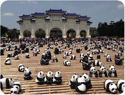 1600猫熊世界之旅門