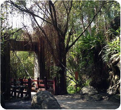 台北市立動物園熱帯