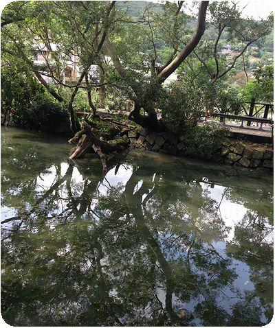 白石吊橋池