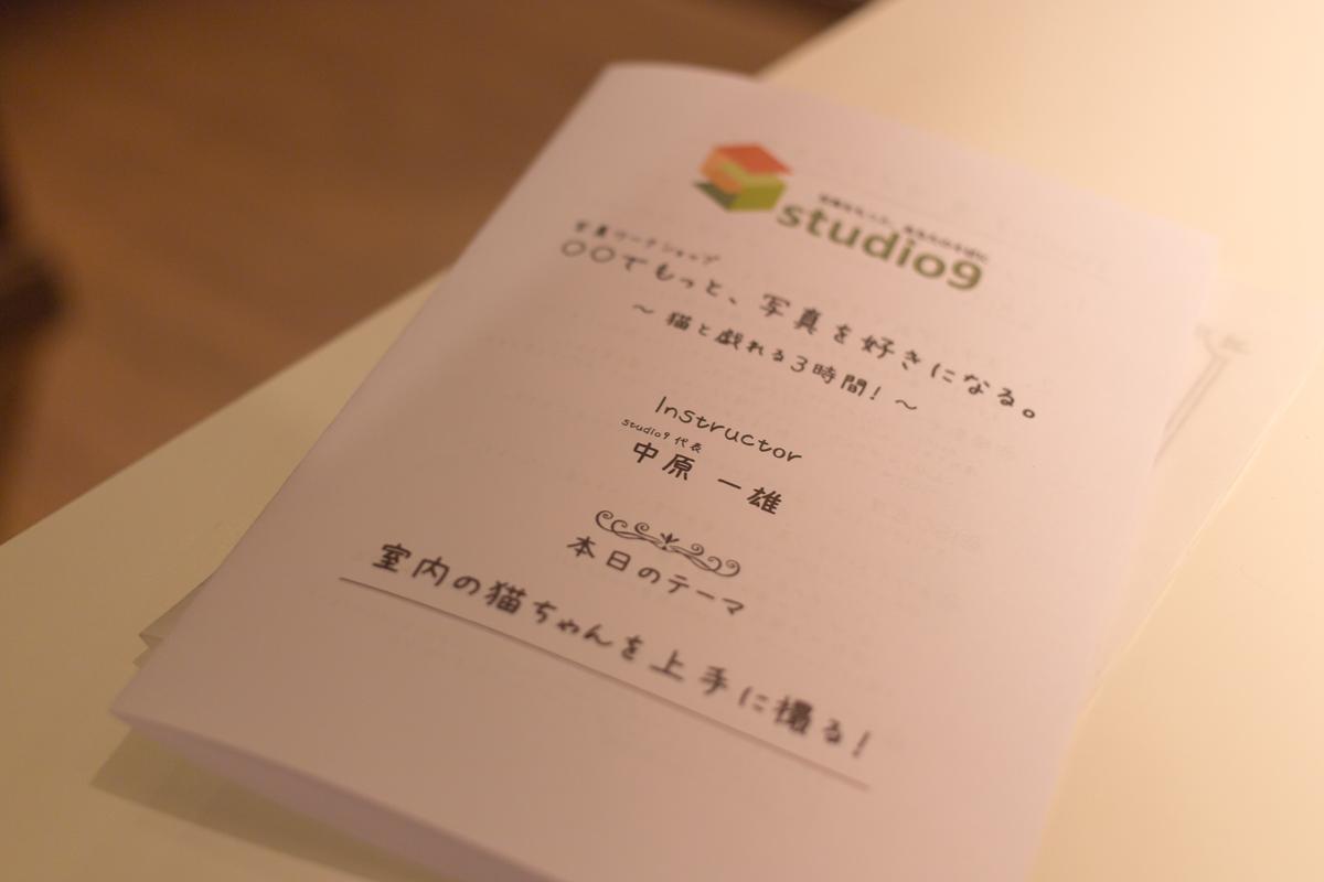 ねこカフェ・説明イメージ(1)
