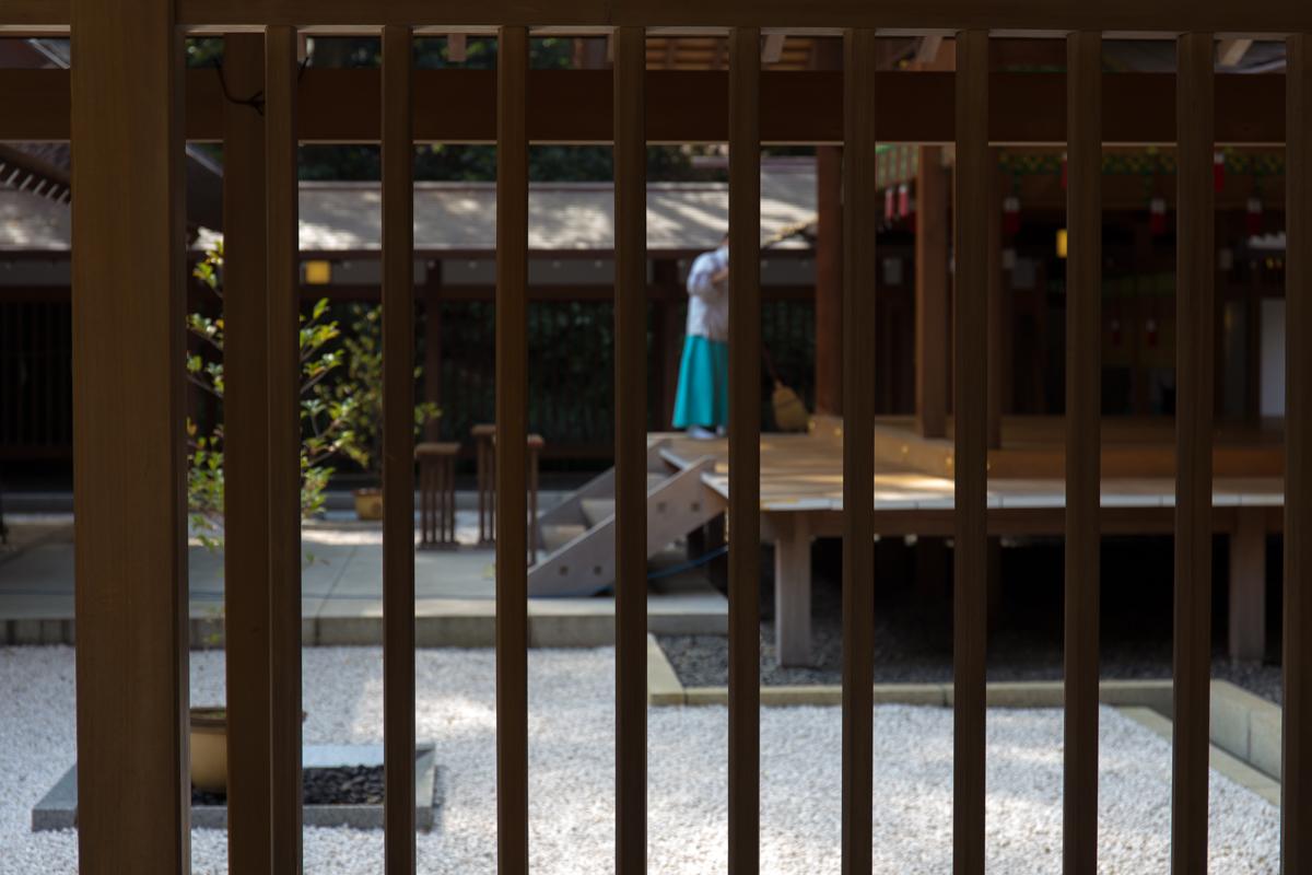 乃木神社(10)