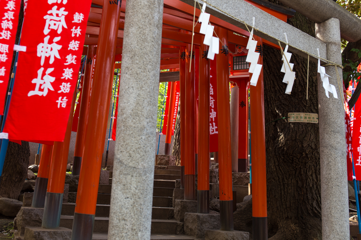 乃木神社(11)