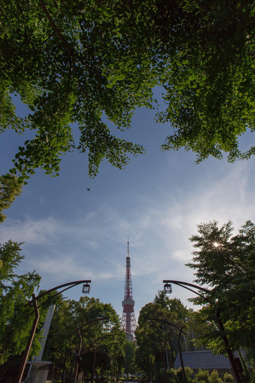 虎ノ門&東京タワー(7)