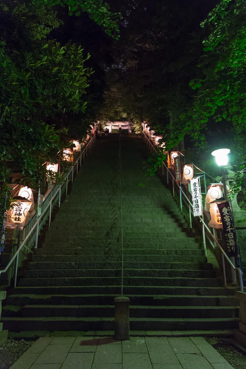 愛宕神社ほおずき市(4)