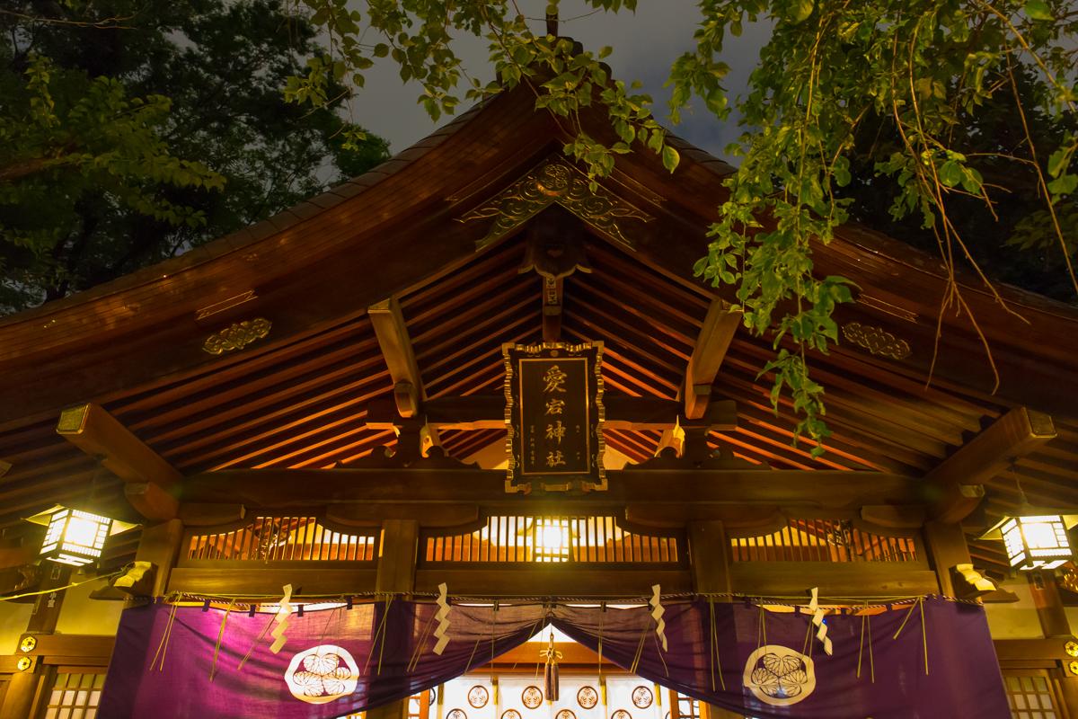 愛宕神社ほおずき市(8)