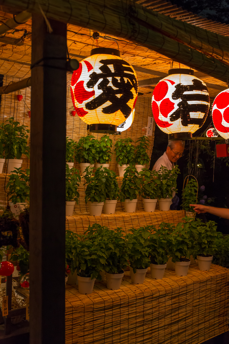 愛宕神社ほおずき市(9)
