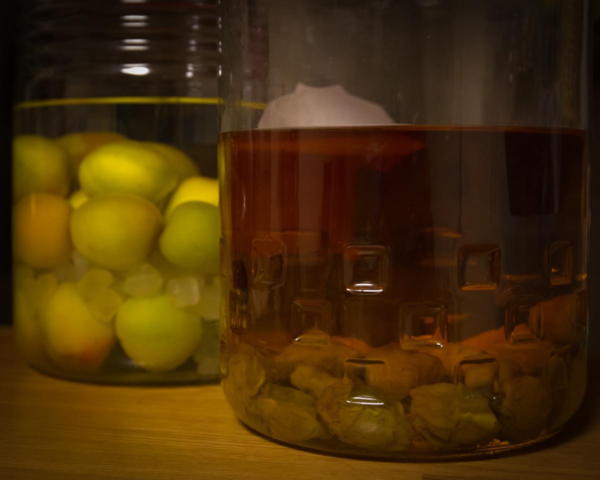 自家製梅酒2014モデル(10)