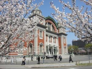 中央公会堂と桜