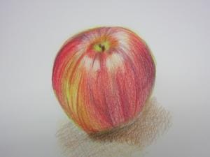 リンゴ色鉛筆4