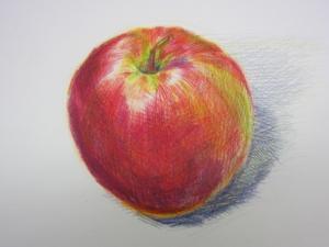 リンゴ色鉛筆6