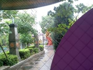台風11号手塚治虫記念館