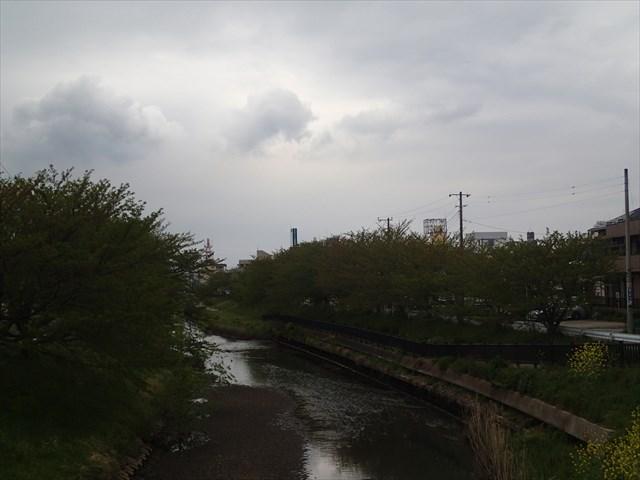 P4200039_R.jpg