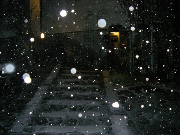 s140205雪2
