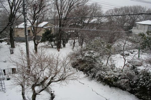 s140214雪