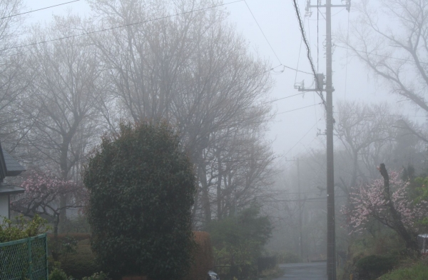 s140404霧