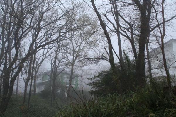 s140404霧2