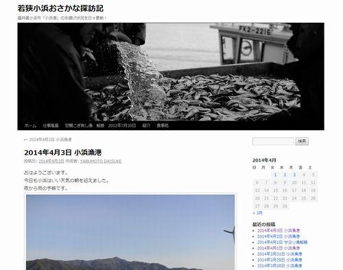 福井県小浜港でサケガシラが大漁らしい...