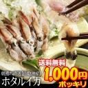 hotaru1000p (1)