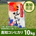 kouchi_koshi10 (2)