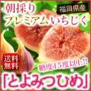 ichi_cart002.jpg