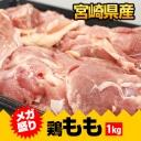 item-ck001001.jpg