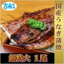 kokusanunagi1_0518.jpg