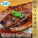 kokusanunagi_1122_2.jpg