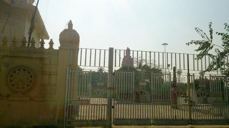Delhi_0616.jpg