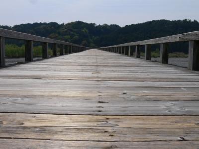 蓬莱橋その2