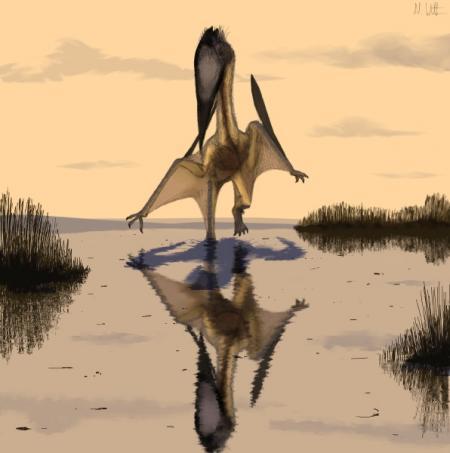flugsaurier.jpg