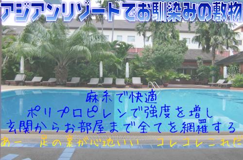 hump_asia_sheet.jpg