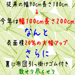2011rattan_gw_02.jpg