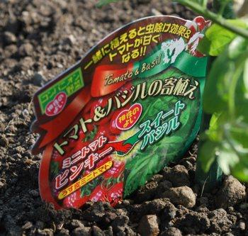 トマトバジル札